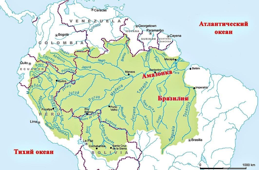 Общая площадь Амазонской низменности